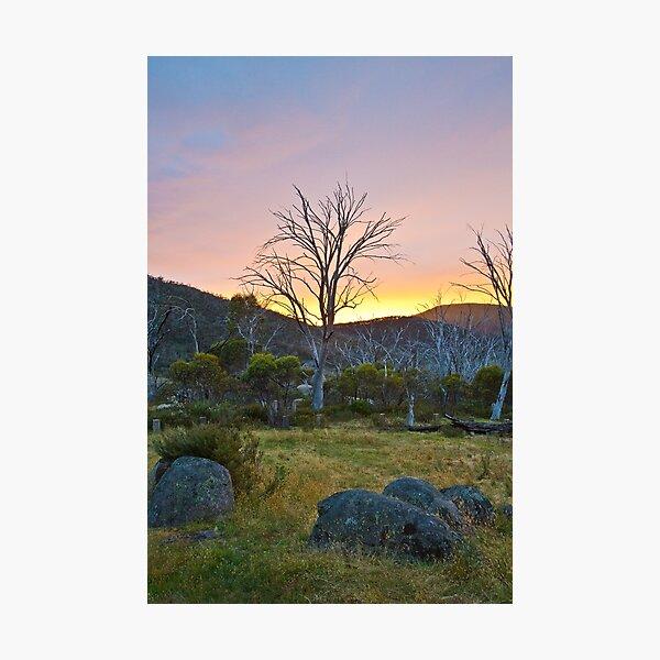 Morning Photographic Print