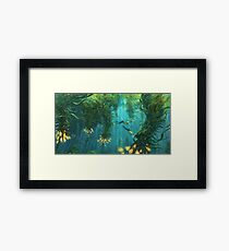 Exploring the Kelp Forest Framed Print