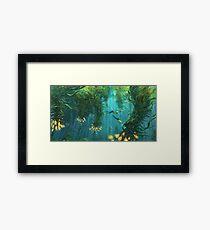 Exploring the Kelp Forest Framed Print