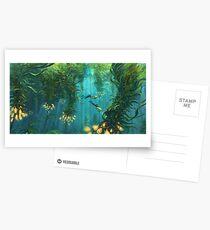 Exploring the Kelp Forest Postcards