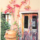 Bougainvillea by the door by Peter Brandt