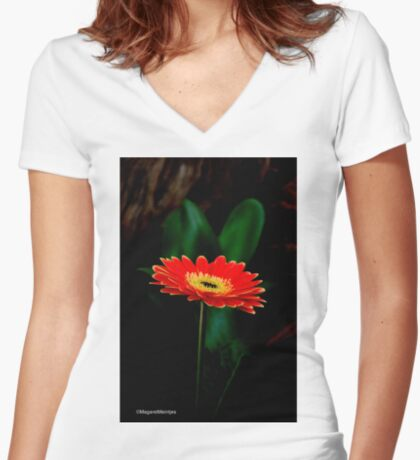 IN THE SHADE - The Barberton Daisy - Gerbera jamesonii  Women's Fitted V-Neck T-Shirt