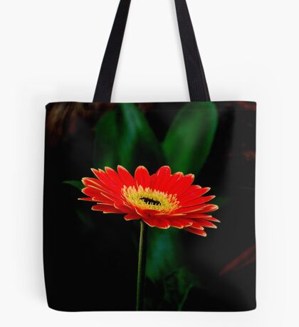 IN THE SHADE - The Barberton Daisy - Gerbera jamesonii  Tote Bag