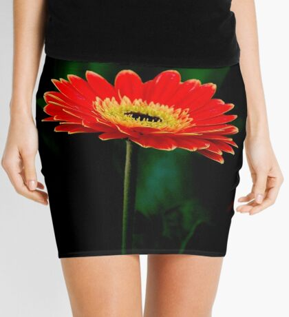 IN THE SHADE - The Barberton Daisy - Gerbera jamesonii  Mini Skirt
