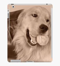 barney iPad Case/Skin
