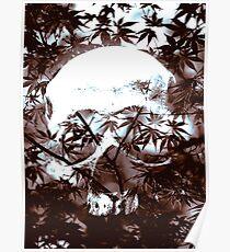 Undergrowth Poster