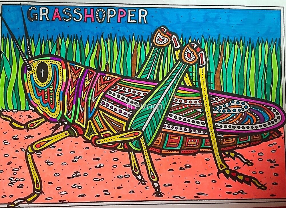 GRASSHOPPER by trevorp