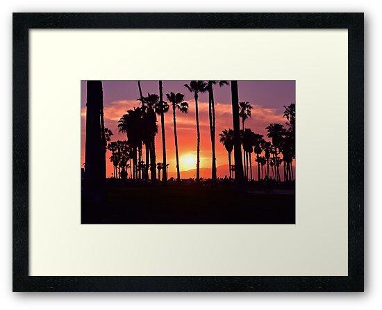 Sunset Over Venice Beach by Saffron Cuccio