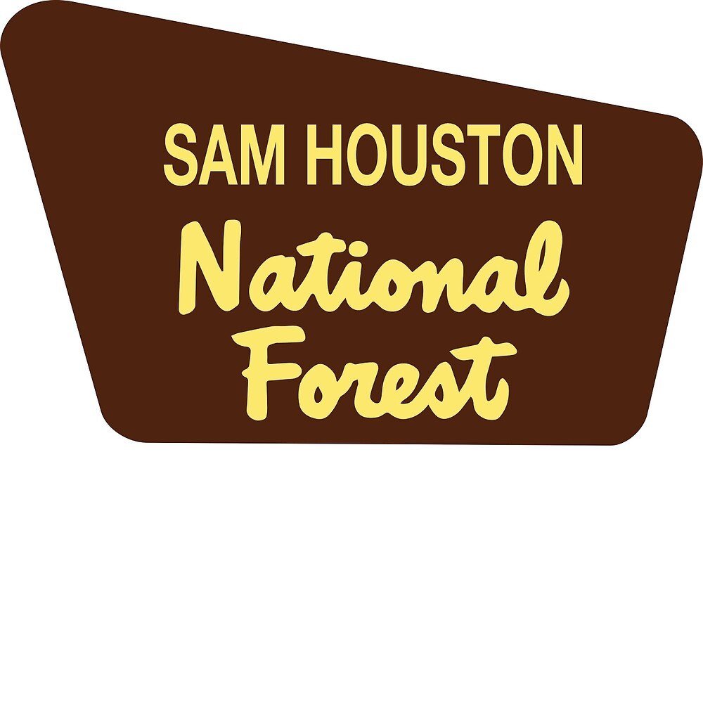 Sam Houston National Forest by Nyle Buss