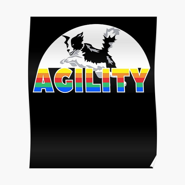 Agility for dog owner and agility dog sport trainer Poster