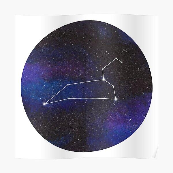 Leo - galaxy star constellation Poster