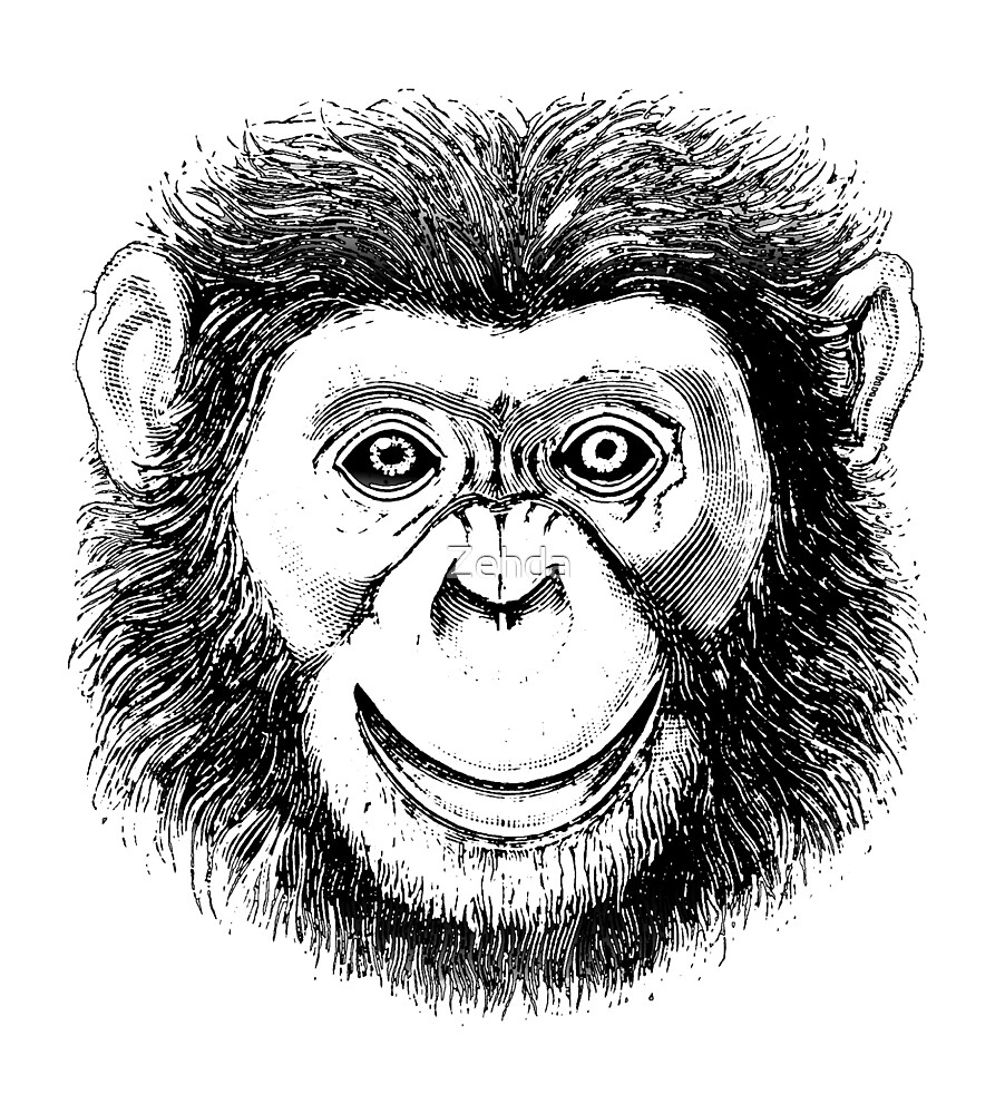 Chimpanzee Face by Zehda