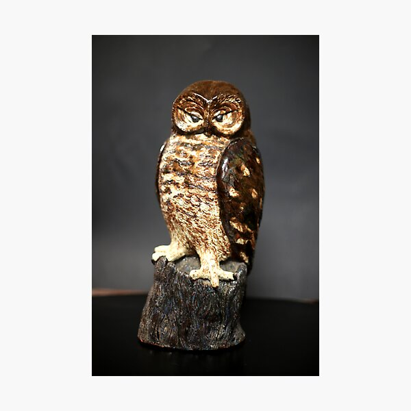 Owl Sculpture Photographic Print