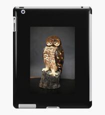 Owl Sculpture iPad Case/Skin