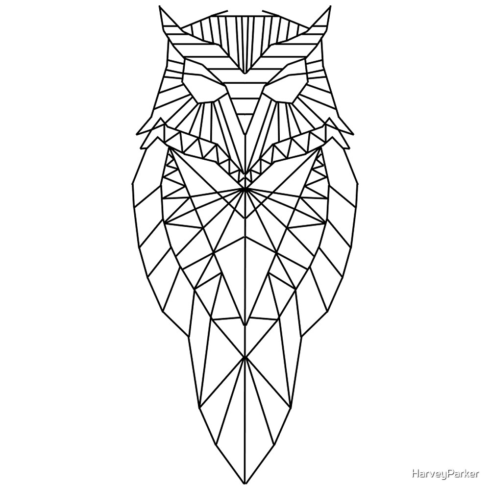 Geometric Owl by HarveyParker