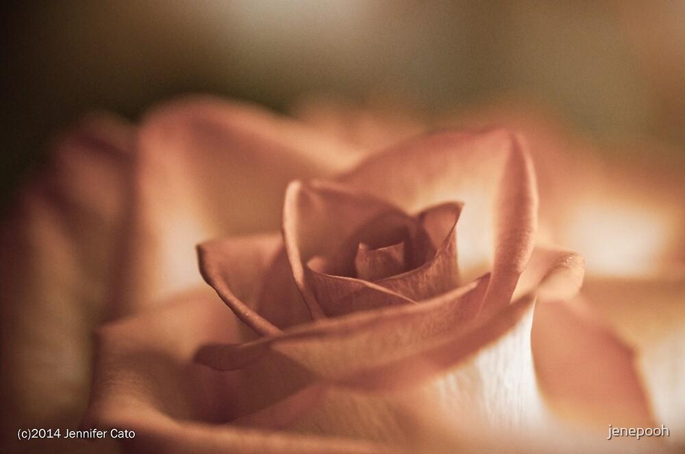 Lovely Rose by jenepooh