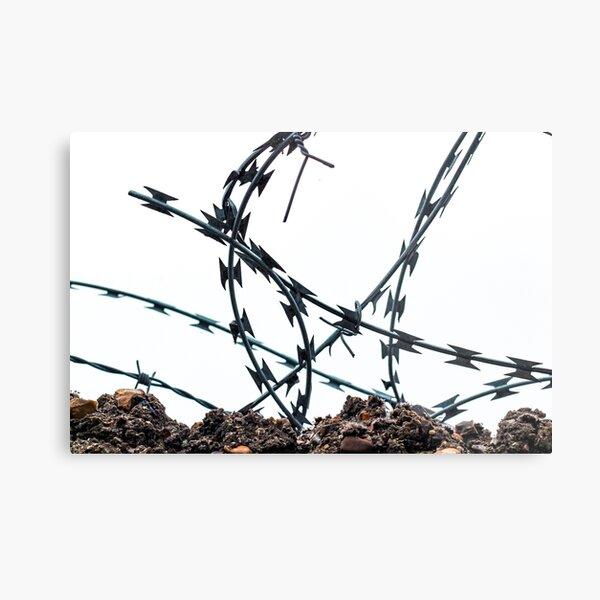 Barbed wire spiked fence urban brutalist minimalist Metal Print