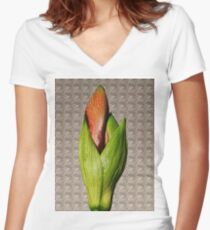 Orangery Red Amaryllis Bud Women's Fitted V-Neck T-Shirt