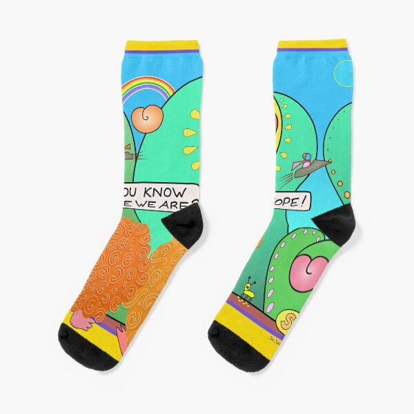 Where We Are Socks