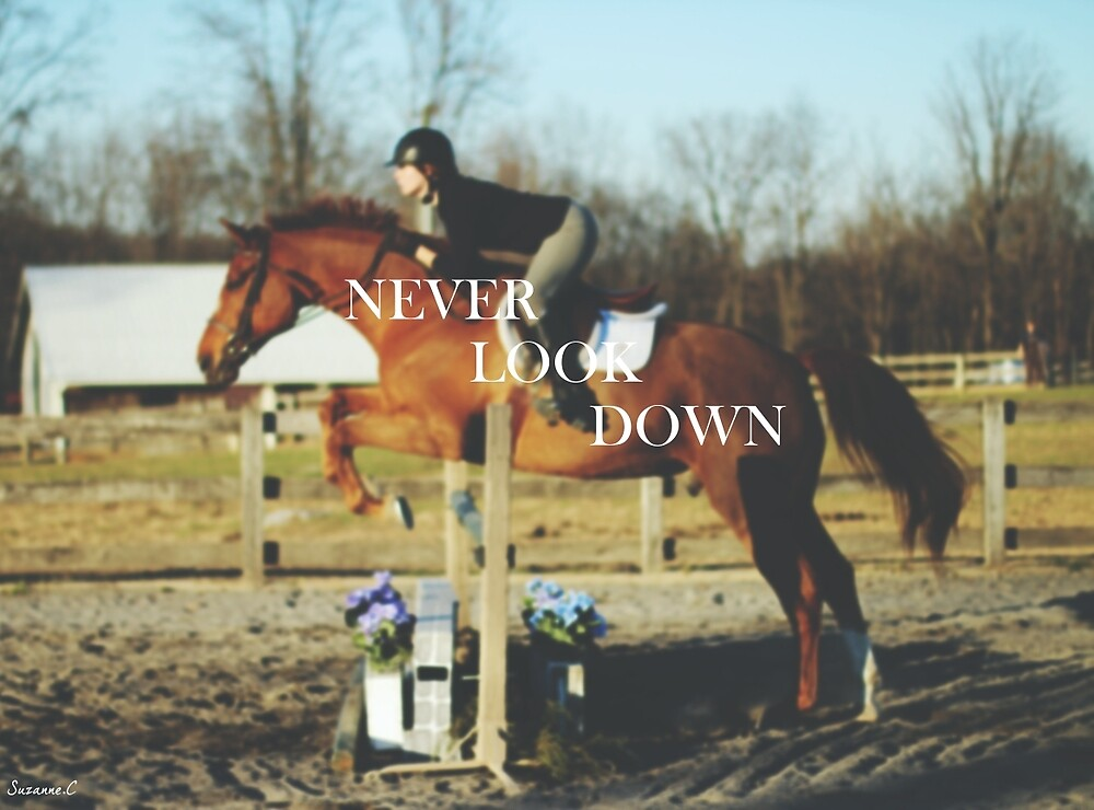 Never Look Down by Suzanne Charette