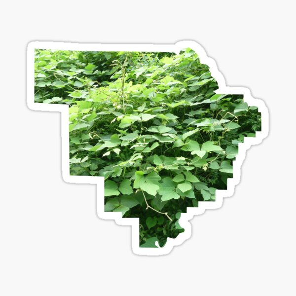Kudzu Kingdom - Walker County, AL Sticker