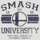 Smash University by Arinesart