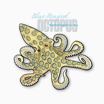 Blue Ringed Octopus by msb1016