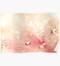 Peach Drops  Poster