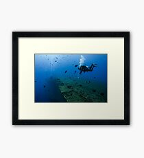 Diver at the MS Zenobia shipwreck.  Framed Print