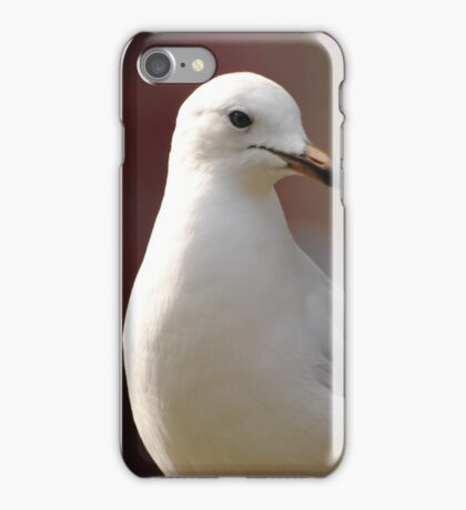 Busy Melbourne City Life As A Seagull  iPhone Case/Skin