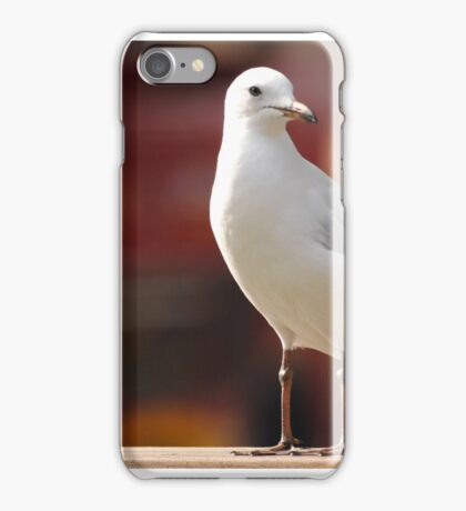Seagull Concentrating iPhone Case/Skin