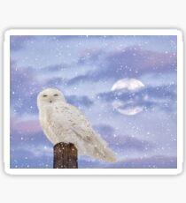 Winter solstice Sticker