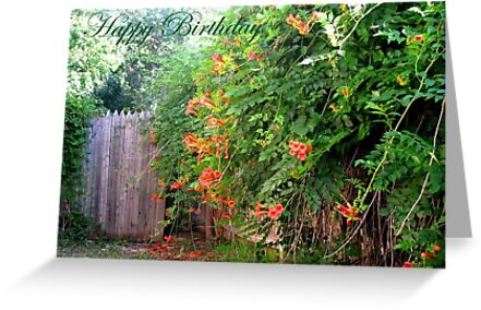 Birthday Card - Gate With Flowers by VivianRay