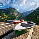 Summer in the Alps by Michael Breitung
