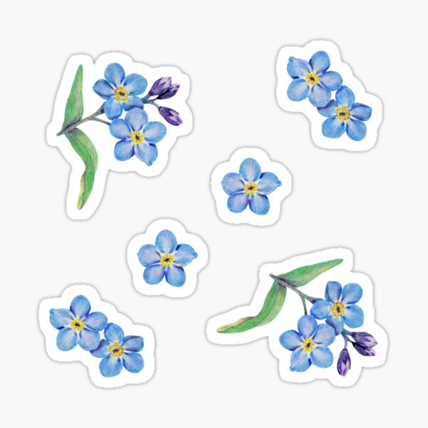 Forget Me Not Pattern Sticker