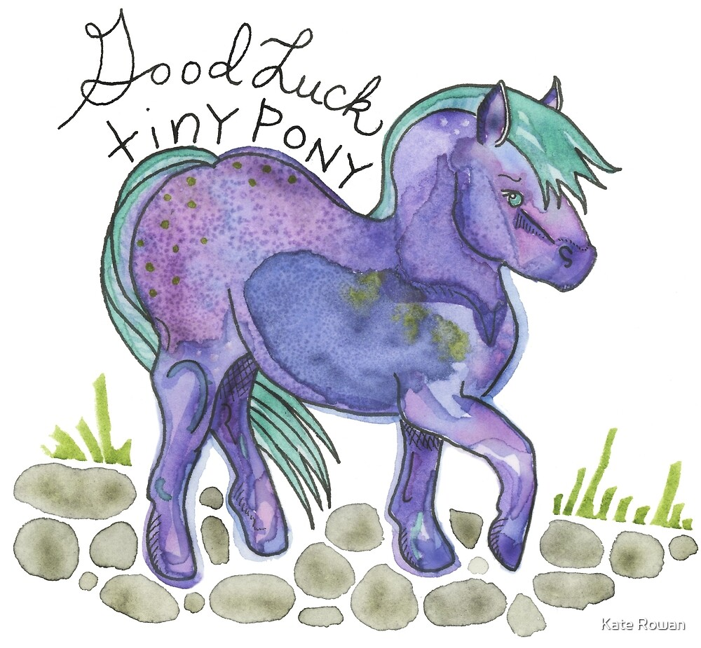 Good Luck Tiny Pony #2 by Kate Rowan