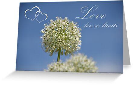 Love has no limits by Fanny88Sheepy86