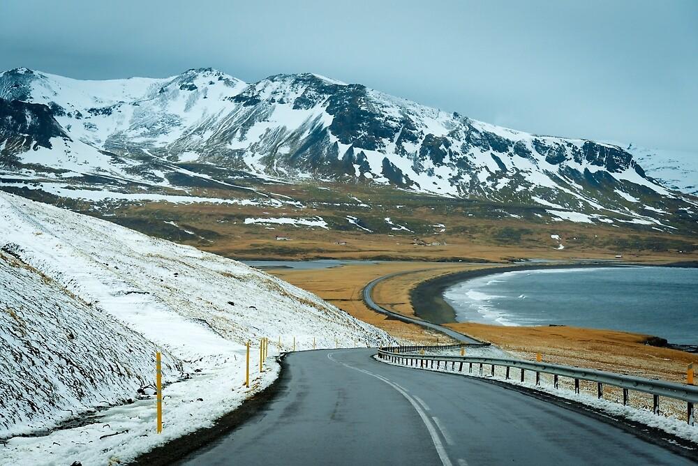 Open Road by Svetlana Sewell