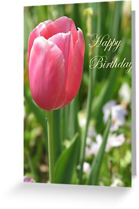 Birthday Card - Pink Tulips by VivianRay