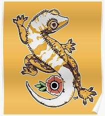 Crested Gecko Poster