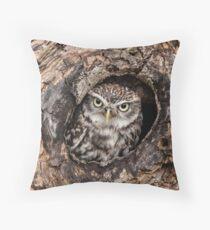 Little owl at home Throw Pillow