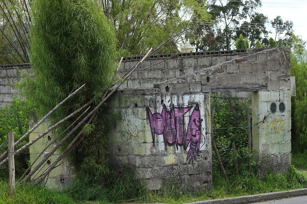 Overgrown Dilapidated Building by rhamm