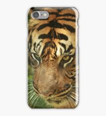 stripes in the forest iPhone Case/Skin