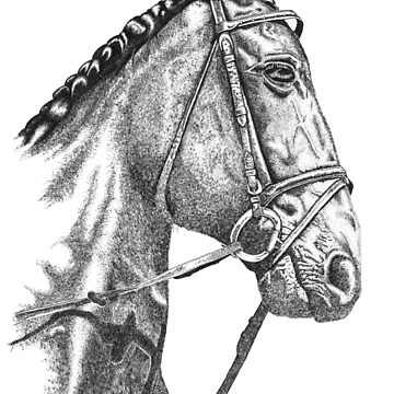 Fine line, hand drawn, Horse in Bridle by muffy79