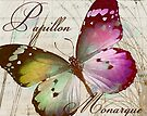 Papillon II by mindydidit