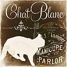 Chat Noir II Vintage Paris Sign by mindydidit