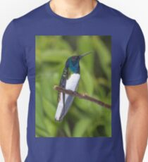 Male White-Necked Jacobin Hummingbird T-Shirt
