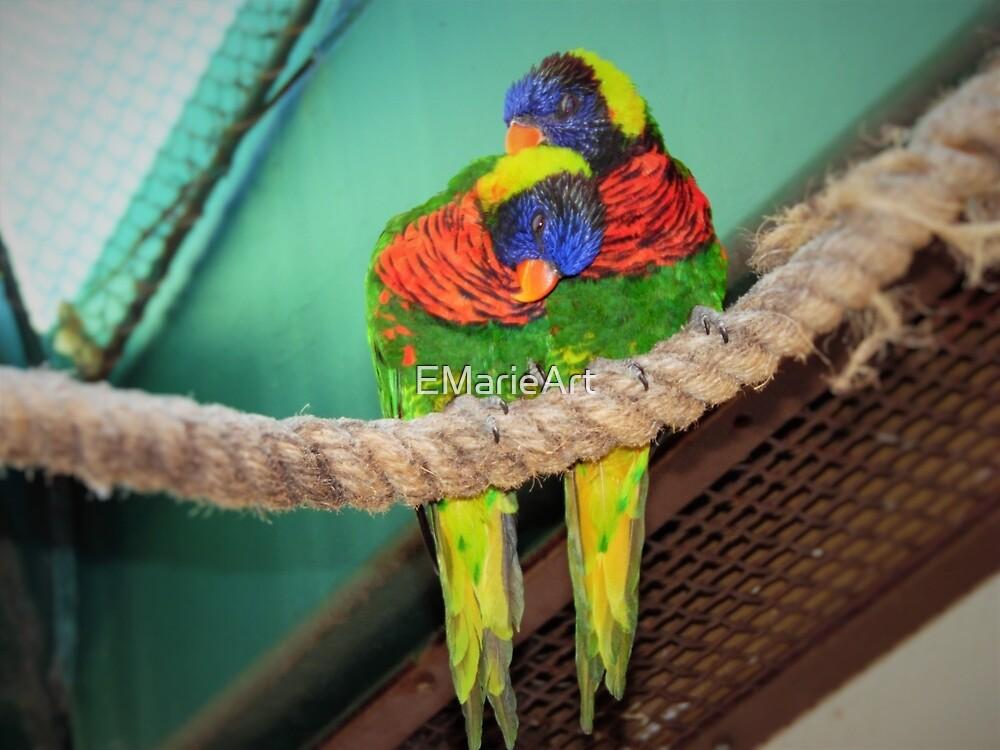 Love Birds by EMarieArt