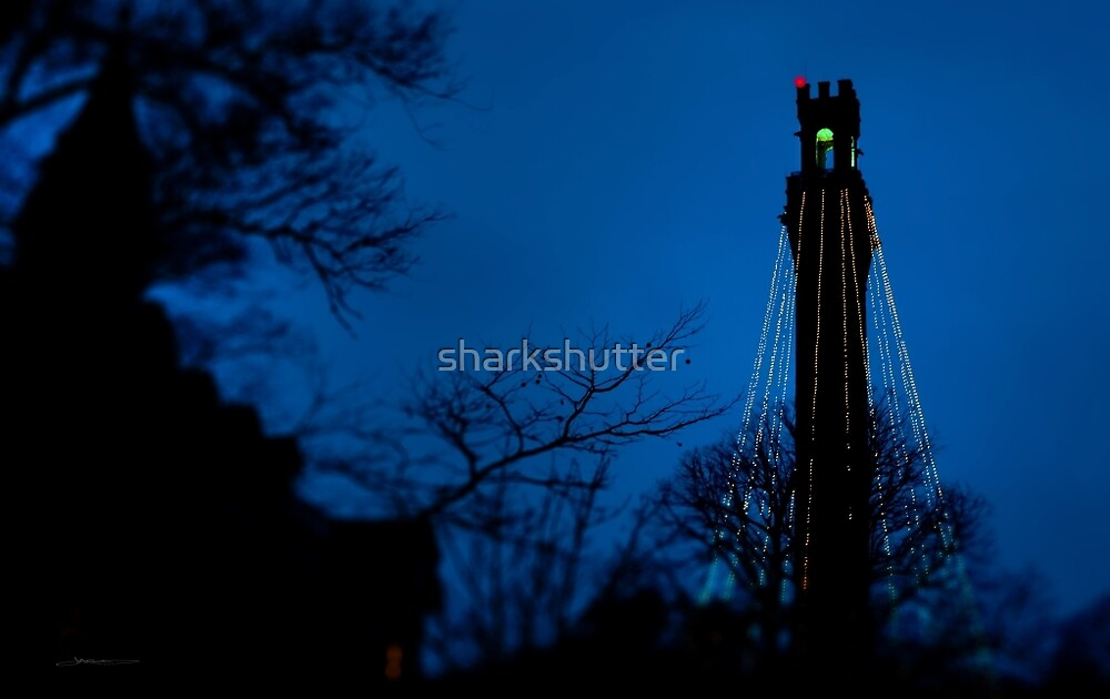 Provicetown blue night, Cape Cod by sharkshutter