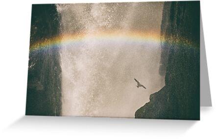 Rainbow Flight - Iguazu Falls, Argentina by JamesKaoFoto